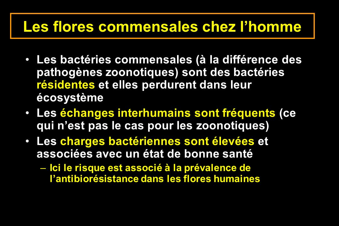 Les flores commensales chez lhomme Les bactéries commensales (à la différence des pathogènes zoonotiques) sont des bactéries résidentes et elles perdu