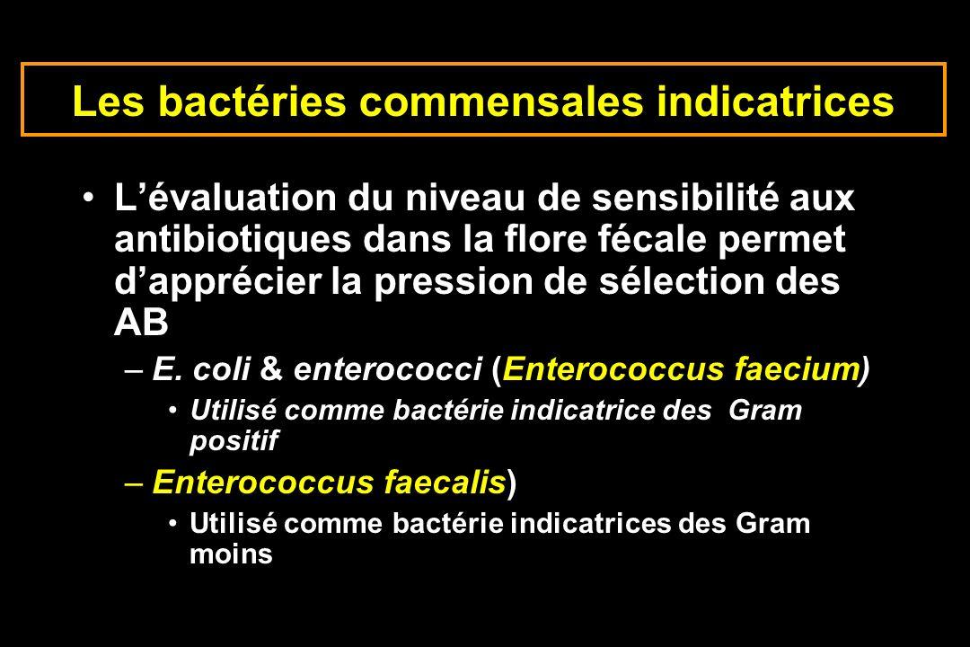 Les bactéries commensales indicatrices Lévaluation du niveau de sensibilité aux antibiotiques dans la flore fécale permet dapprécier la pression de sé