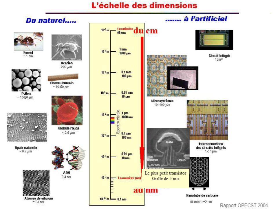 Les nanotechnologies dans le domaine de la santé (Risques/Bénéfices Agence Française de Sécurité Sanitaire des Produits de Santé Département Toxicologie Dr D.MASSET