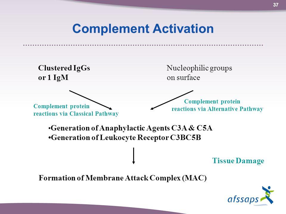36 Induction du système immunitaire par des nanoparticules Dans lorganisme, les protéines sont les molécules préférentiellement adsorbées.
