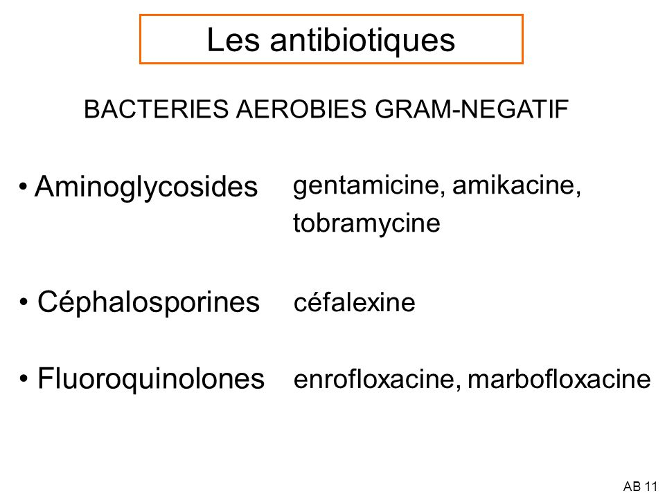 AB 12 BACTERIES ANAEROBIES Non productrices de beta-lactamases benzylpénicilline, céphalosporines > ampicilline clindamycine Productrices de beta-lactamases Bacteroïdes fragilis, autres clindamycine, métronidazole FLAGYL ® A éviter :AminoglycosidesFluoroquinolones Sulfamides (pus) Les antibiotiques