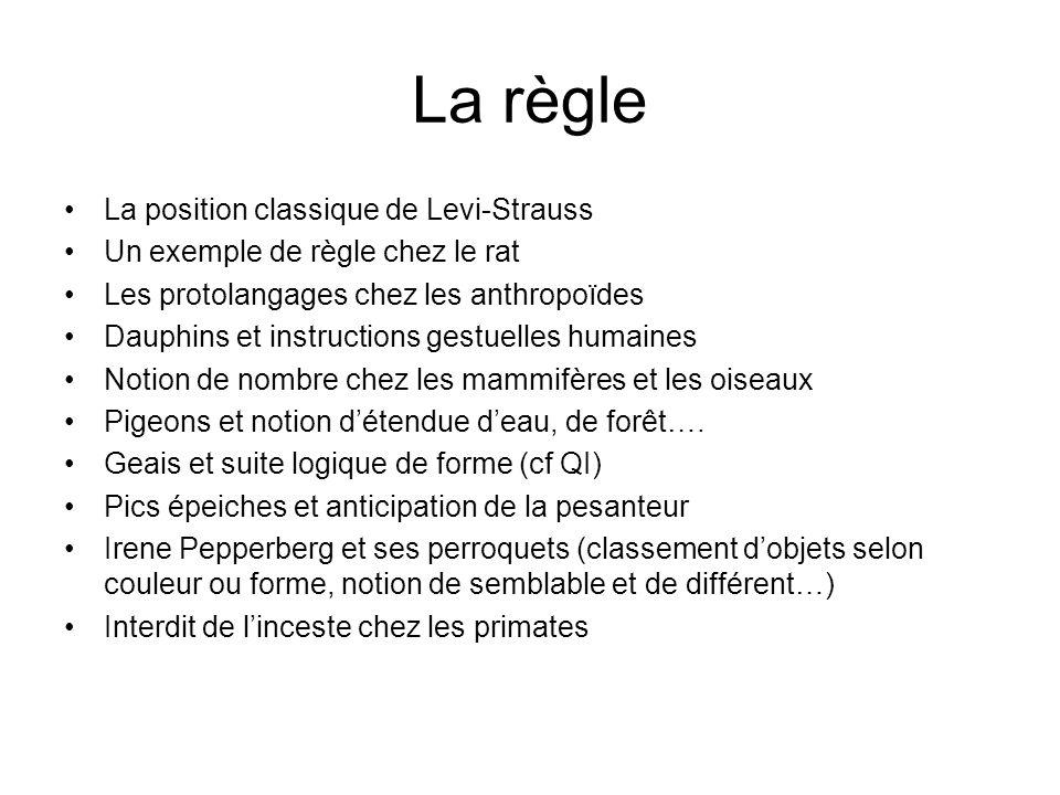 La règle La position classique de Levi-Strauss Un exemple de règle chez le rat Les protolangages chez les anthropoïdes Dauphins et instructions gestue