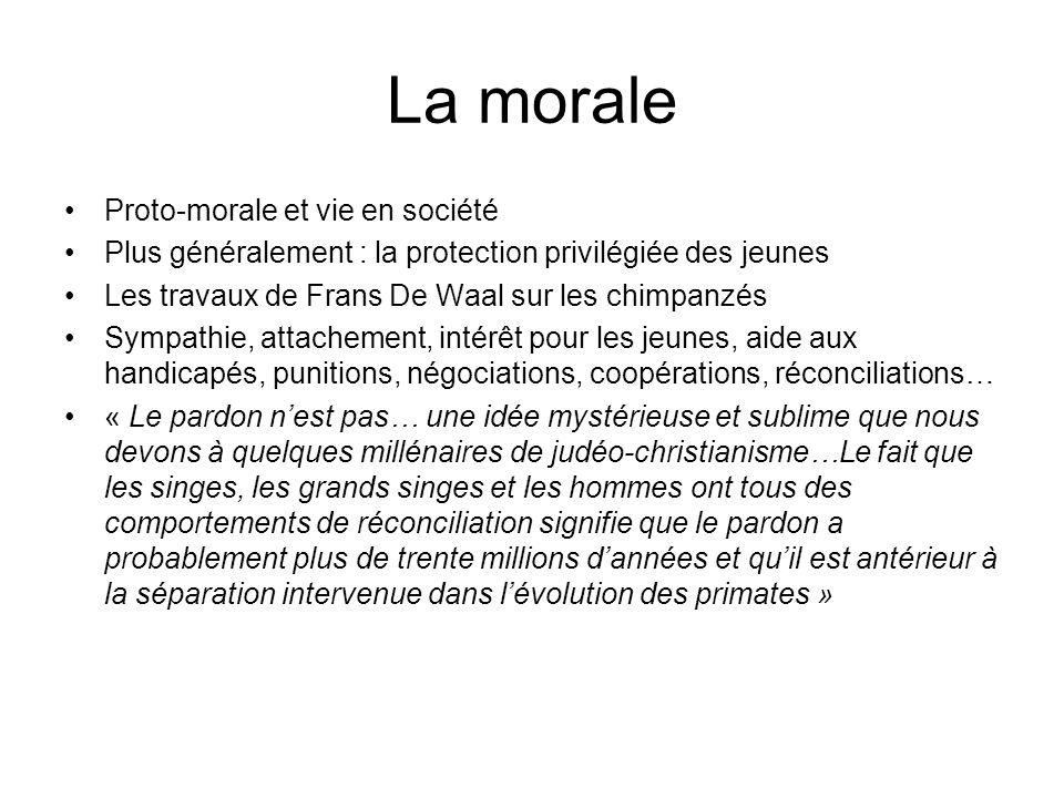 La morale Proto-morale et vie en société Plus généralement : la protection privilégiée des jeunes Les travaux de Frans De Waal sur les chimpanzés Symp