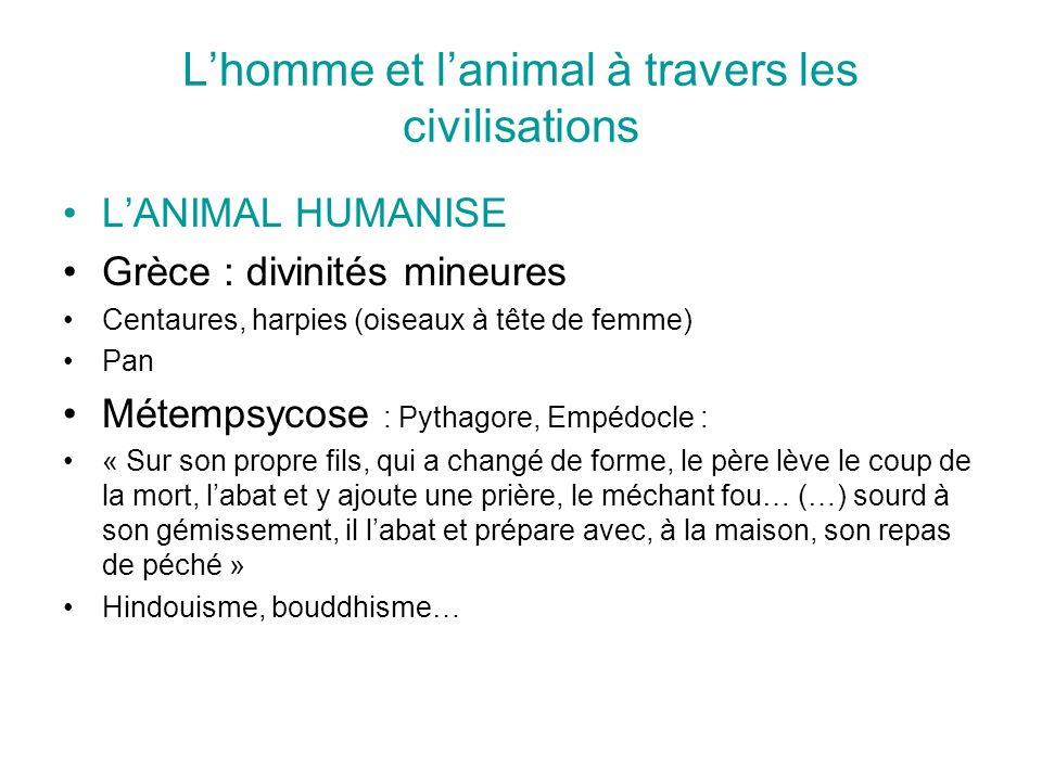 Lhomme et lanimal à travers les civilisations LANIMAL HUMANISE Grèce : divinités mineures Centaures, harpies (oiseaux à tête de femme) Pan Métempsycos