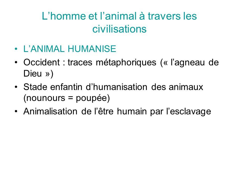 Lhomme et lanimal à travers les civilisations LANIMAL HUMANISE Occident : traces métaphoriques (« lagneau de Dieu ») Stade enfantin dhumanisation des