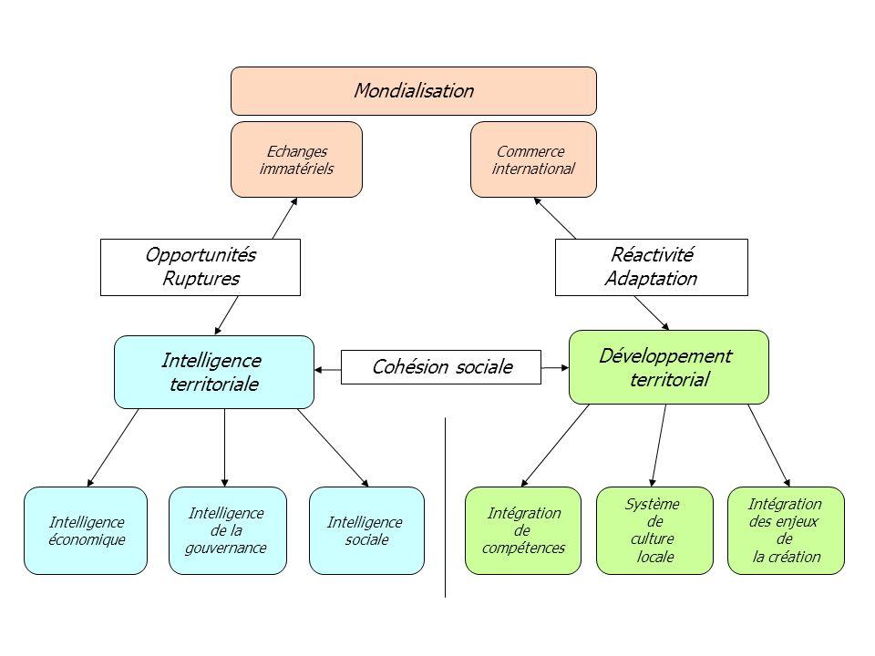Développement territorial Echanges immatériels Intelligence économique Intégration de compétences Commerce international Intelligence de la gouvernanc