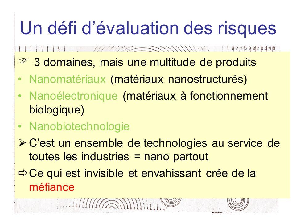 Un défi dévaluation des risques 3 domaines, mais une multitude de produits Nanomatériaux (matériaux nanostructurés) Nanoélectronique (matériaux à fonc