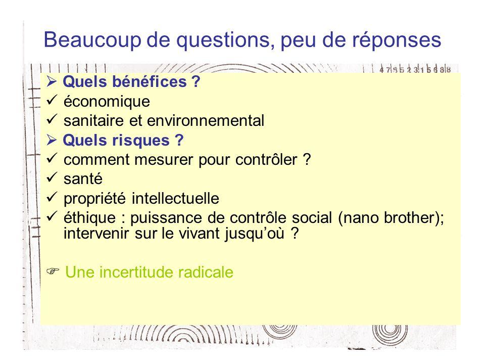 Beaucoup de questions, peu de réponses Quels bénéfices ? économique sanitaire et environnemental Quels risques ? comment mesurer pour contrôler ? sant