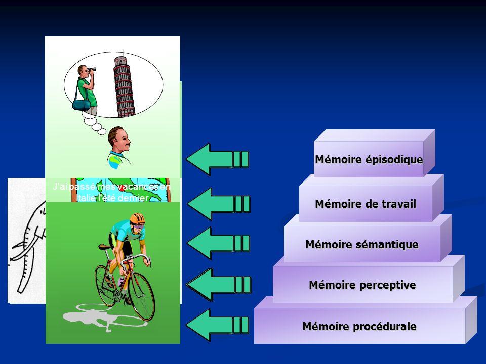 La mémoire et le vieillissement Mémoires sémantique, perceptive et procédurale : +