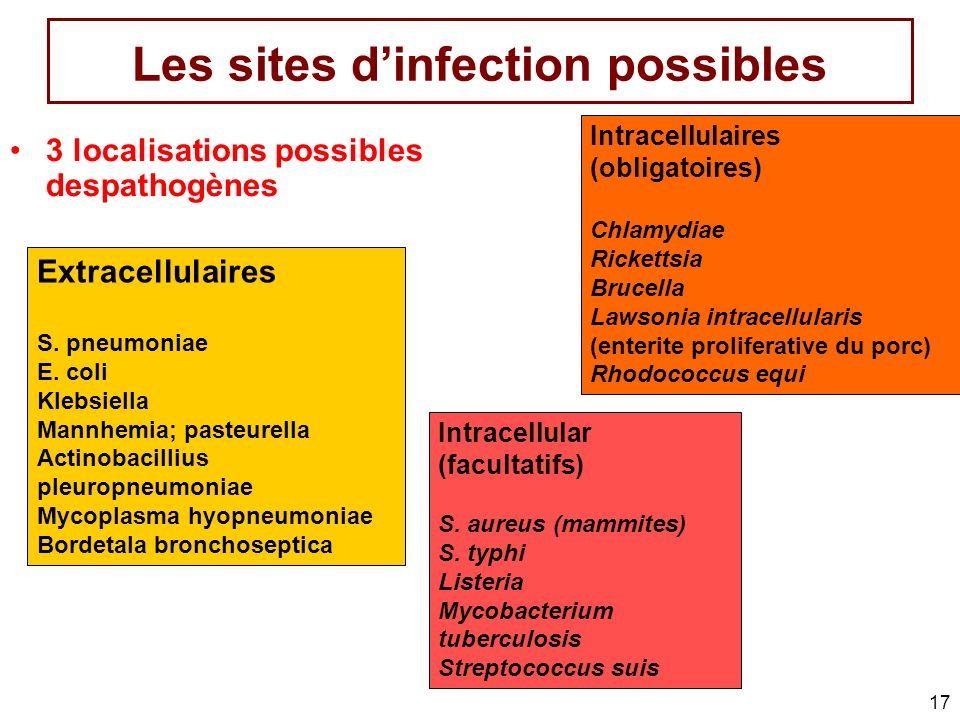 17 Les sites dinfection possibles 3 localisations possibles despathogènes Extracellulaires S. pneumoniae E. coli Klebsiella Mannhemia; pasteurella Act