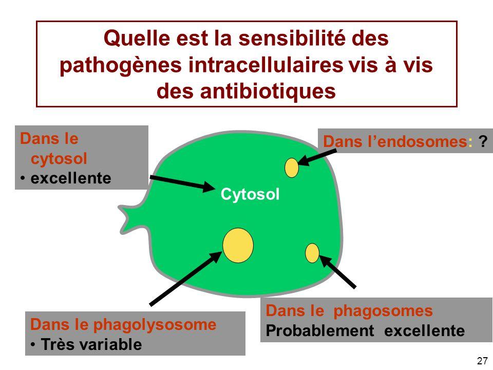 27 Quelle est la sensibilité des pathogènes intracellulaires vis à vis des antibiotiques Dans lendosomes: ? Dans le cytosol excellente Dans le phagoso