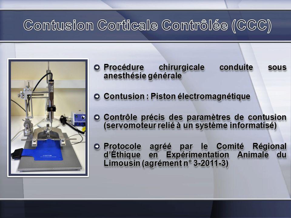 Procédure chirurgicale conduite sous anesthésie générale Contusion : Piston électromagnétique Contrôle précis des paramètres de contusion (servomoteur