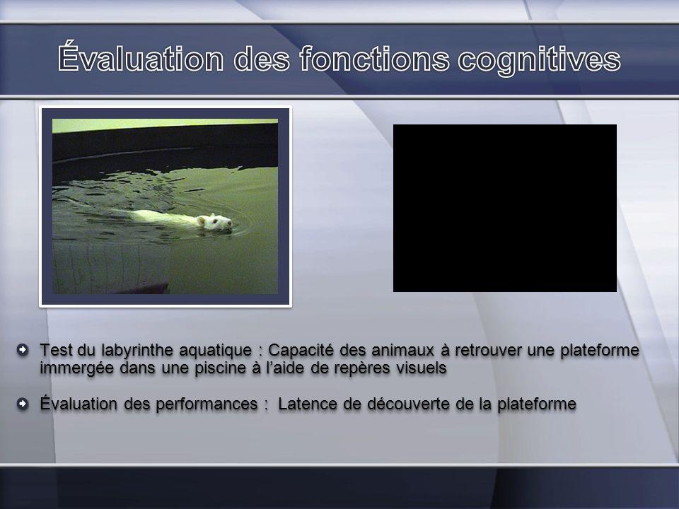 Test du labyrinthe aquatique : Capacité des animaux à retrouver une plateforme immergée dans une piscine à laide de repères visuels Évaluation des per