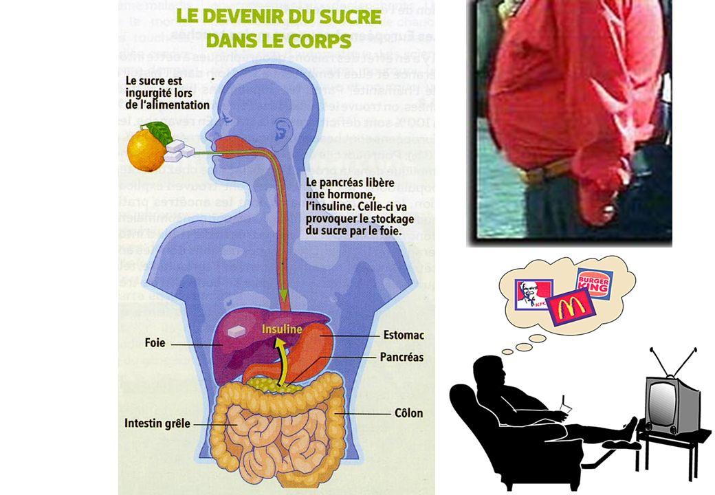 Epidémiologie et définition du diabète Une épidémie mondiale Prévalence importante et en augmentation Maladie lourde de conséquences par ses complications Glycémie à jeun 1,26 g/l (7 mmol/l) vérifiée à 2 reprises ou glycémie 2g/l (11 mmol/l) dans la journée, avec signes cardinaux (amaigrissement, fatique, soif et urines abondantes)