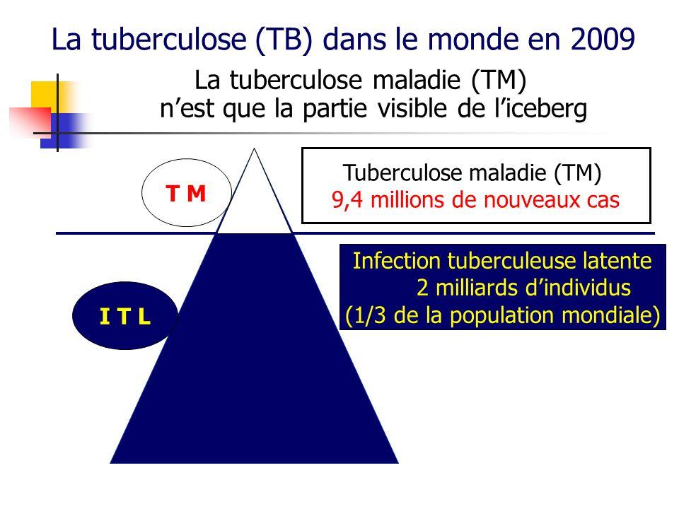 Prévalence (anciens et nouveaux cas) : 14 millions de cas Incidence (nouveaux cas) 9,4 millions de nouveaux cas estimés (dont 1,1 million chez des sujets VIH +) Taux dincidence : 137 / 100 000 habitants 80 % des cas sont regroupés dans 22 pays (High-burden countries) 1,7 million de décès (dont 380 000 chez des sujets VIH +) Impact socio-économique important : 75 % des malades sont âgés de 15 à 54 ans Rapport OMS 2010-2011 TM dans le monde en 2009 Estimations OMS