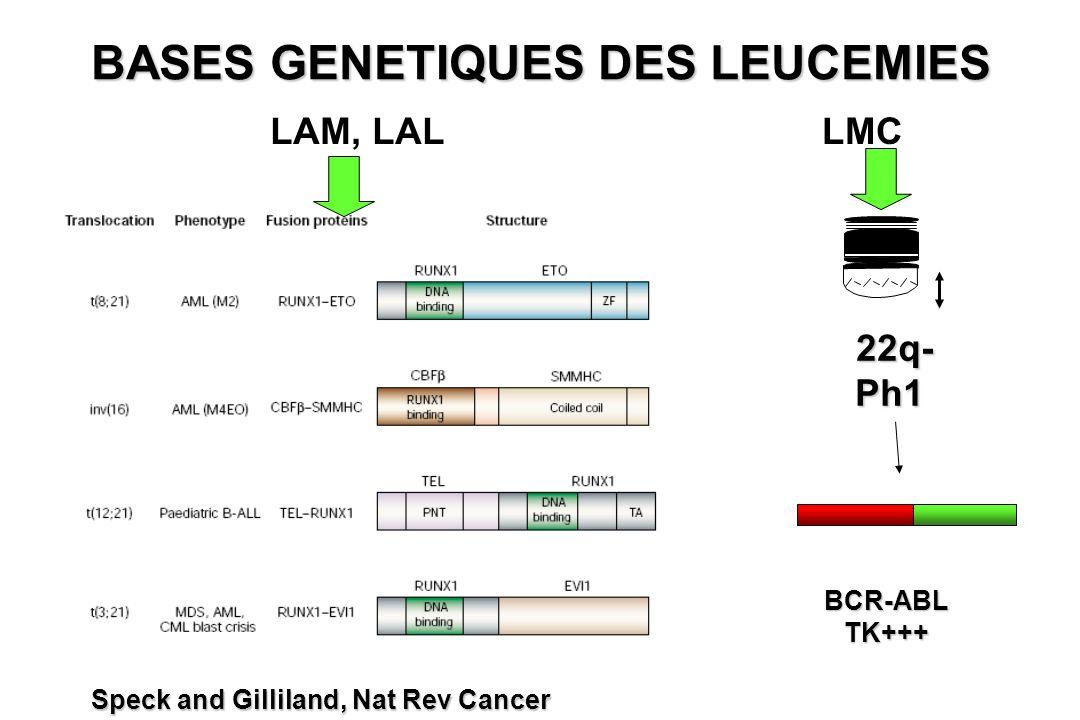 BASES GENETIQUES DES LEUCEMIES 22q- 22q-Ph1 BCR-ABLTK+++ LAM, LALLMC Speck and Gilliland, Nat Rev Cancer