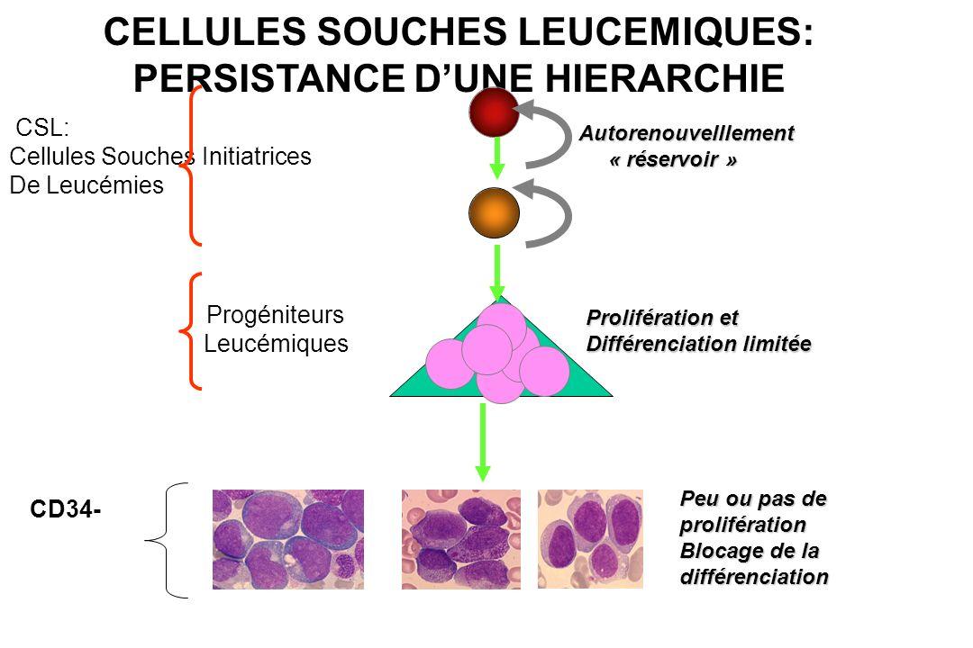 CELLULES SOUCHES LEUCEMIQUES: PERSISTANCE DUNE HIERARCHIE CSL: Cellules Souches Initiatrices De Leucémies Prolifération et Différenciation limitée Pro