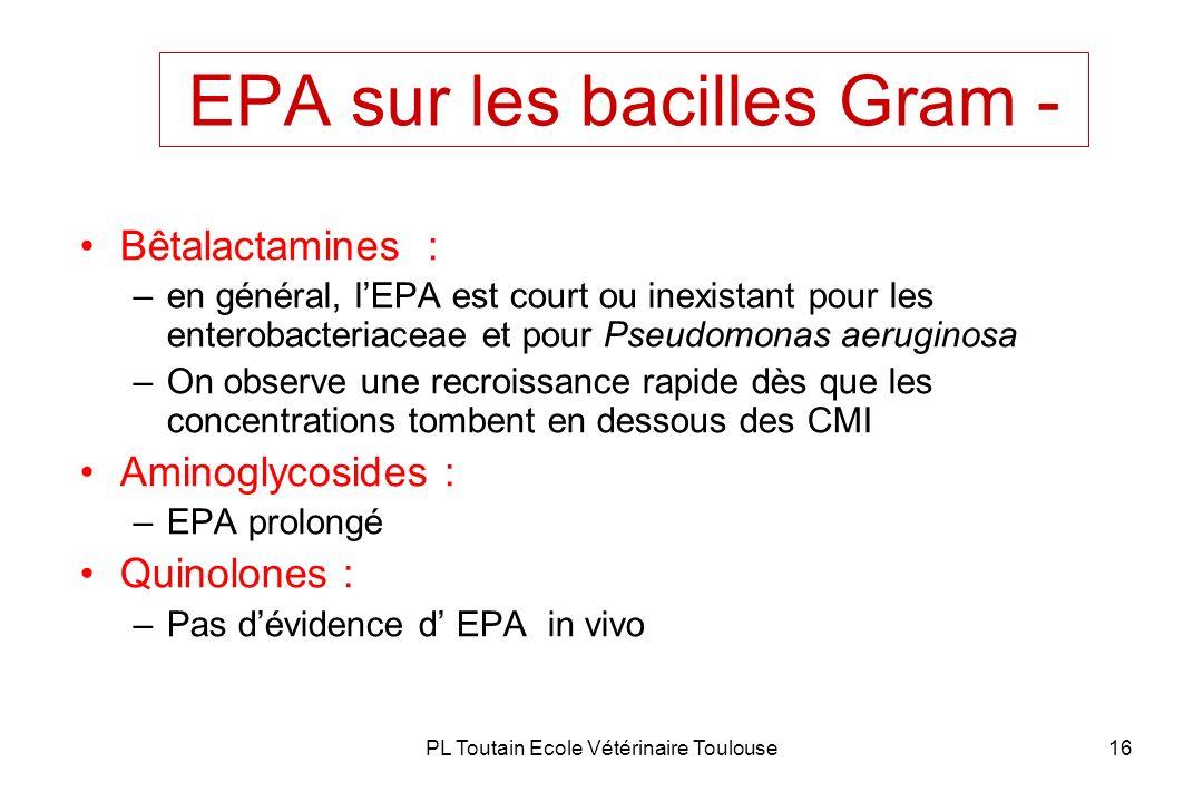 PL Toutain Ecole Vétérinaire Toulouse16 EPA sur les bacilles Gram - Bêtalactamines : –en général, lEPA est court ou inexistant pour les enterobacteria