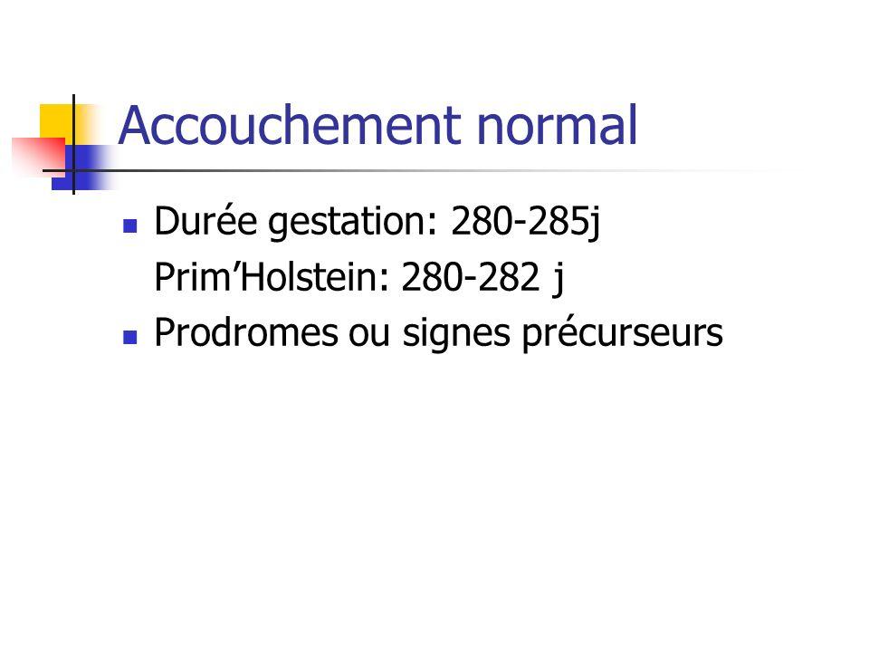 Accouchement normal Durée gestation: 280-285j PrimHolstein: 280-282 j Prodromes ou signes précurseurs