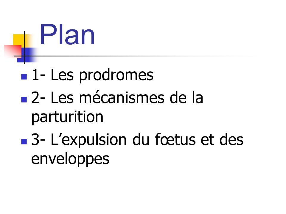 Plan 1- Les prodromes 2- Les mécanismes de la parturition 3- Lexpulsion du fœtus et des enveloppes