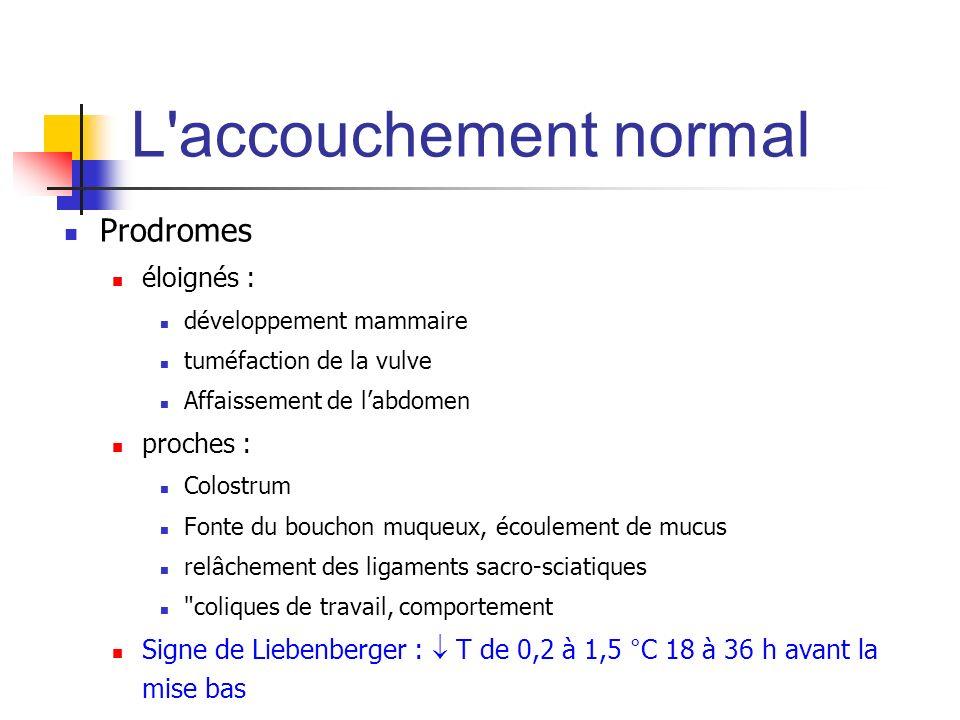 L'accouchement normal Prodromes éloignés : développement mammaire tuméfaction de la vulve Affaissement de labdomen proches : Colostrum Fonte du boucho