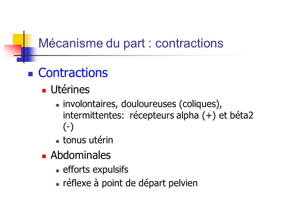 Mécanisme du part : contractions Contractions Utérines involontaires, douloureuses (coliques), intermittentes: récepteurs alpha (+) et béta2 (-) tonus