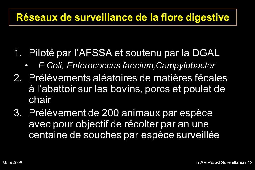 Mars 20095-AB Resist Surveillance 12 Réseaux de surveillance de la flore digestive 1.Piloté par lAFSSA et soutenu par la DGAL E Coli, Enterococcus fae