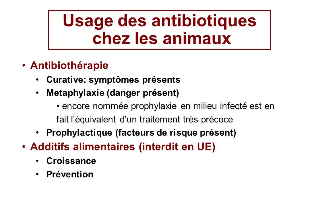 Usage des antibiotiques chez les animaux Antibiothérapie Curative: symptômes présents Metaphylaxie (danger présent) encore nommée prophylaxie en milie