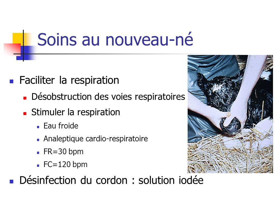 Soins au nouveau-né Faciliter la respiration Désobstruction des voies respiratoires Stimuler la respiration Eau froide Analeptique cardio-respiratoire FR=30 bpm FC=120 bpm Désinfection du cordon : solution iodée