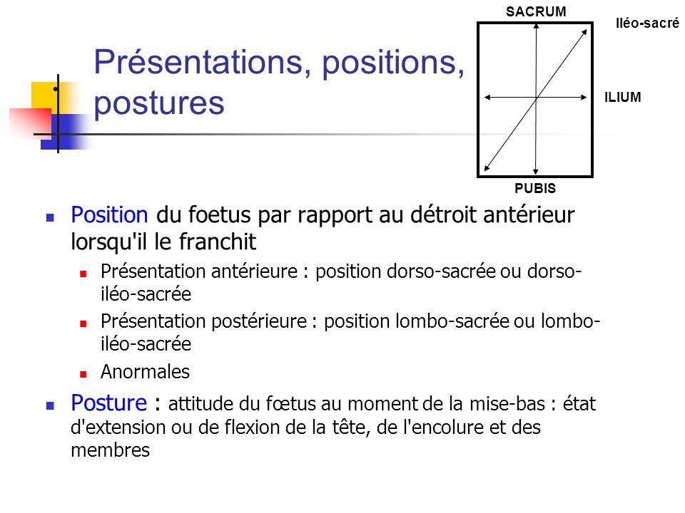 Présentations, positions, postures Position du foetus par rapport au détroit antérieur lorsqu'il le franchit Présentation antérieure : position dorso-