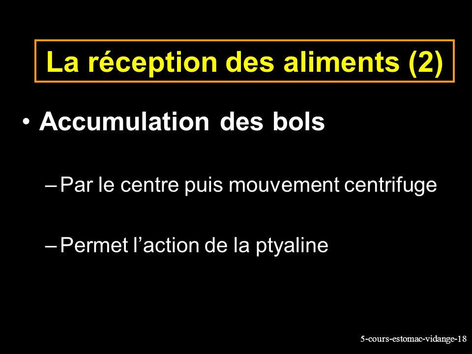 5-cours-estomac-vidange-18 La réception des aliments (2) Accumulation des bols –Par le centre puis mouvement centrifuge –Permet laction de la ptyaline
