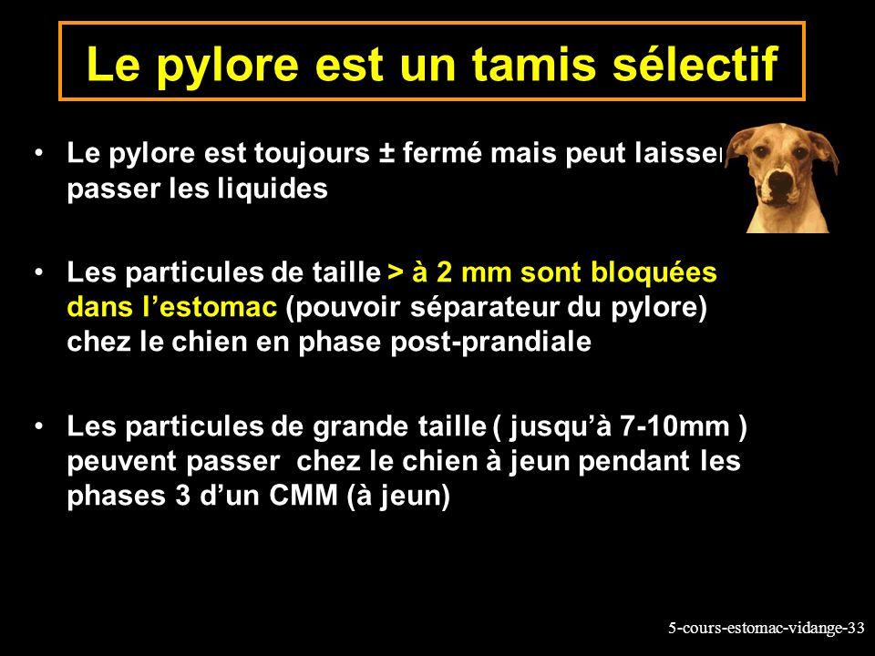 5-cours-estomac-vidange-33 Le pylore est un tamis sélectif Le pylore est toujours ± fermé mais peut laisser passer les liquides Les particules de tail