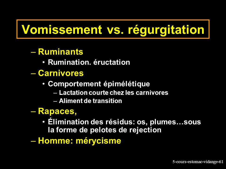 5-cours-estomac-vidange-61 –Ruminants Rumination. éructation –Carnivores Comportement épimélétique –Lactation courte chez les carnivores –Aliment de t