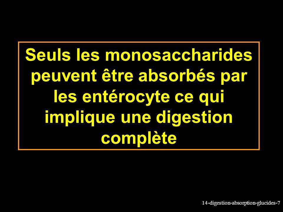 14-digestion-absorption-glucides-7 Seuls les monosaccharides peuvent être absorbés par les entérocyte ce qui implique une digestion complète