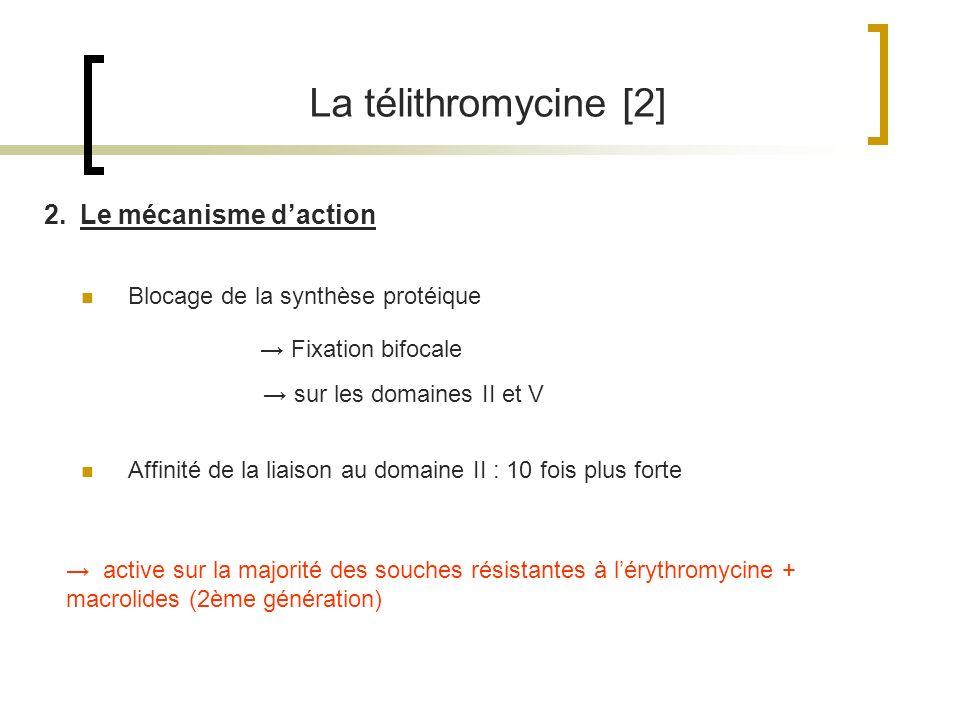 La télithromycine [2] 2.Le mécanisme daction Fixation bifocale Blocage de la synthèse protéique Affinité de la liaison au domaine II : 10 fois plus fo