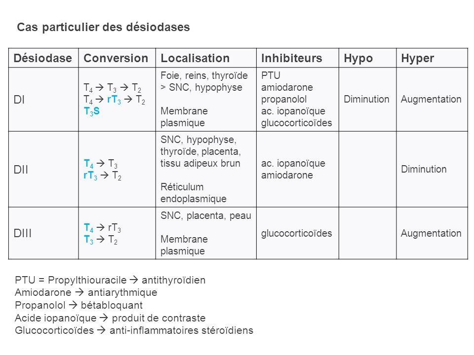 Cas particulier des désiodases DésiodaseConversionLocalisationInhibiteursHypoHyper DI T 4 T 3 T 2 T 4 rT 3 T 2 T 3 S Foie, reins, thyroïde > SNC, hypo