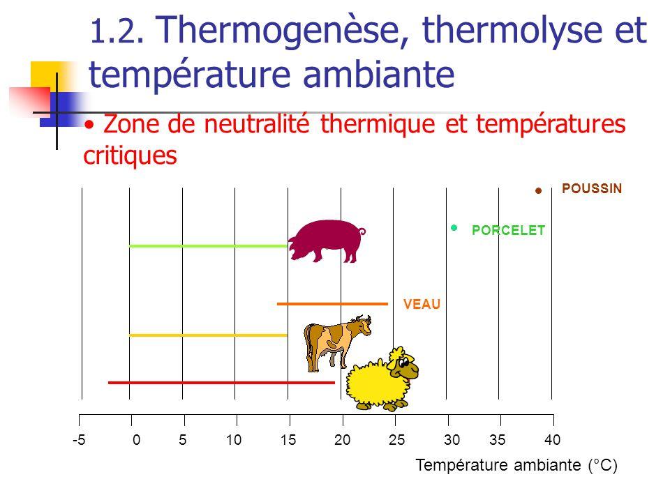 -50510152025303540 MOUTON VACHE VEAU PORC PORCELET POUSSIN Température ambiante (°C) Zone de neutralité thermique et températures critiques 1.2. Therm