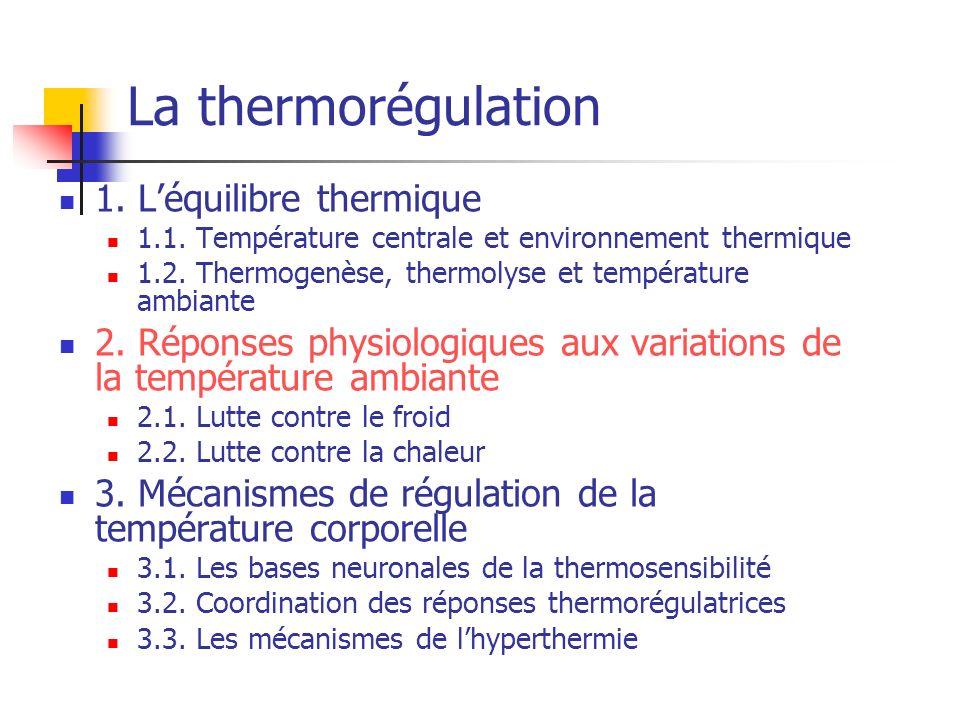 La thermorégulation 1. Léquilibre thermique 1.1. Température centrale et environnement thermique 1.2. Thermogenèse, thermolyse et température ambiante