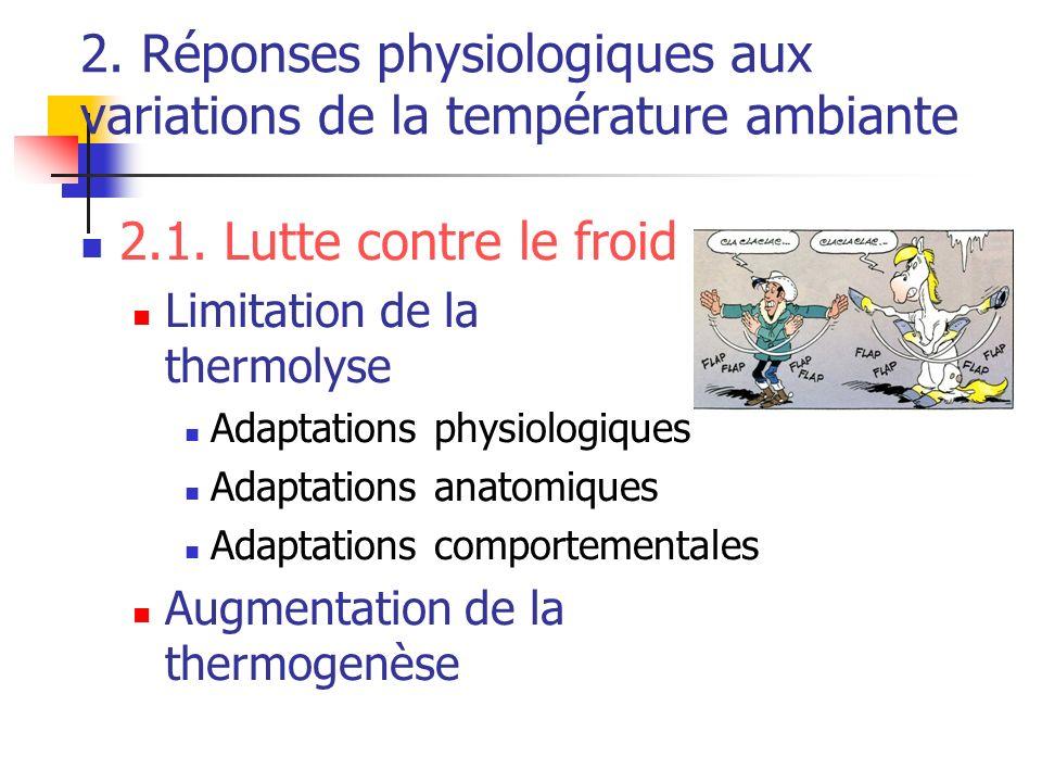 2. Réponses physiologiques aux variations de la température ambiante 2.1. Lutte contre le froid Limitation de la thermolyse Adaptations physiologiques