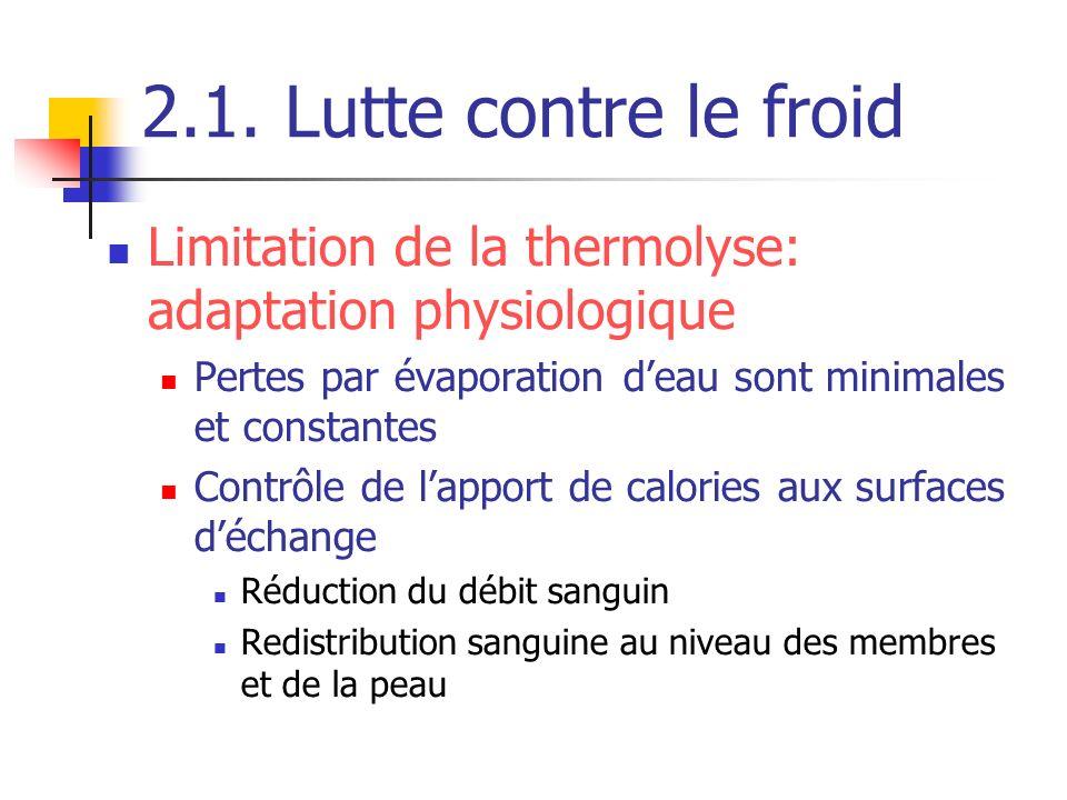2.1. Lutte contre le froid Limitation de la thermolyse: adaptation physiologique Pertes par évaporation deau sont minimales et constantes Contrôle de