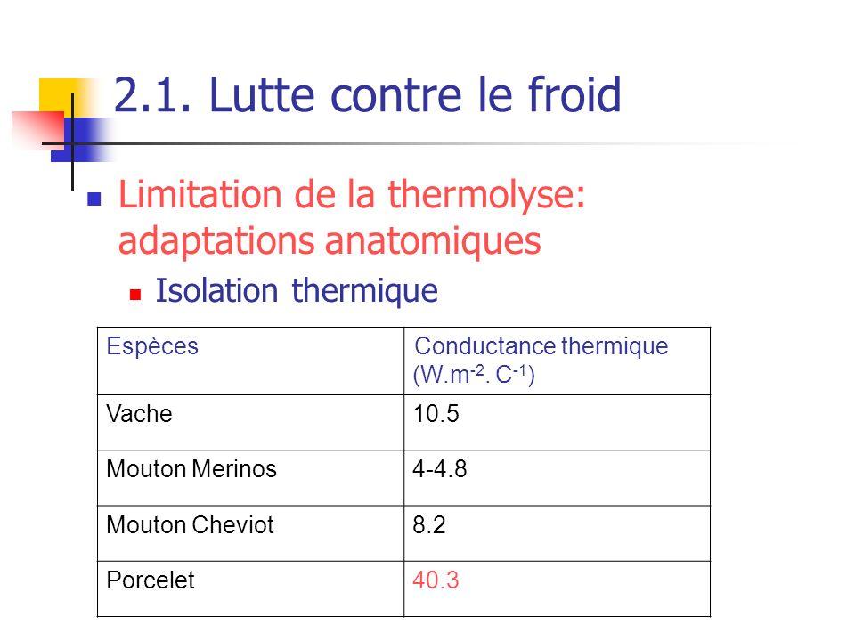 2.1. Lutte contre le froid Limitation de la thermolyse: adaptations anatomiques Isolation thermique EspècesConductance thermique (W.m -2. C -1 ) Vache