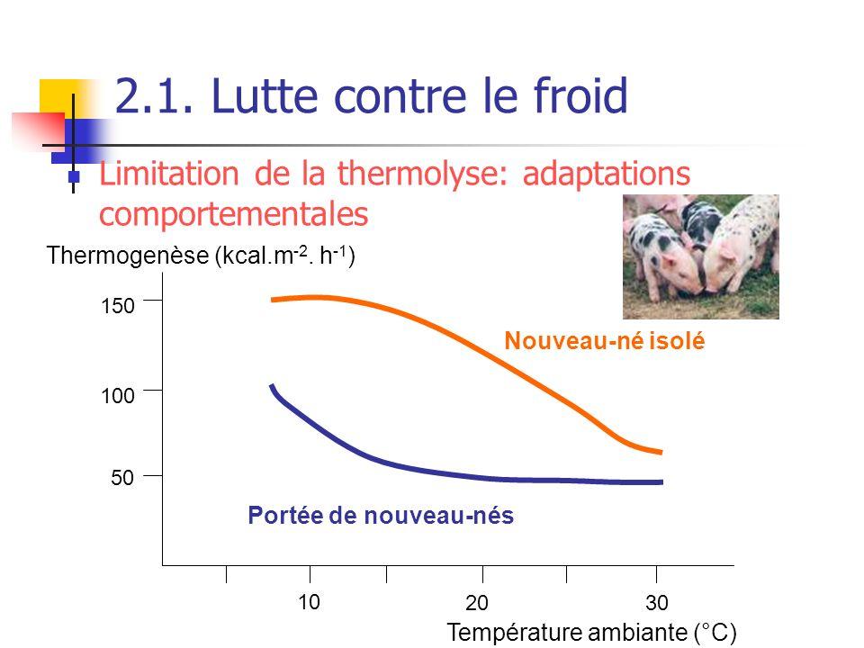 2.1. Lutte contre le froid 10 2030 50 100 150 Température ambiante (°C) Thermogenèse (kcal.m -2. h -1 ) Nouveau-né isolé Portée de nouveau-nés Limitat