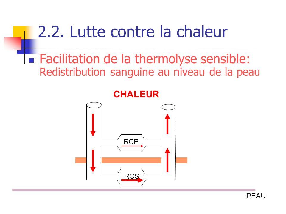 2.2. Lutte contre la chaleur Facilitation de la thermolyse sensible: Redistribution sanguine au niveau de la peau RCP RCS CHALEUR PEAU
