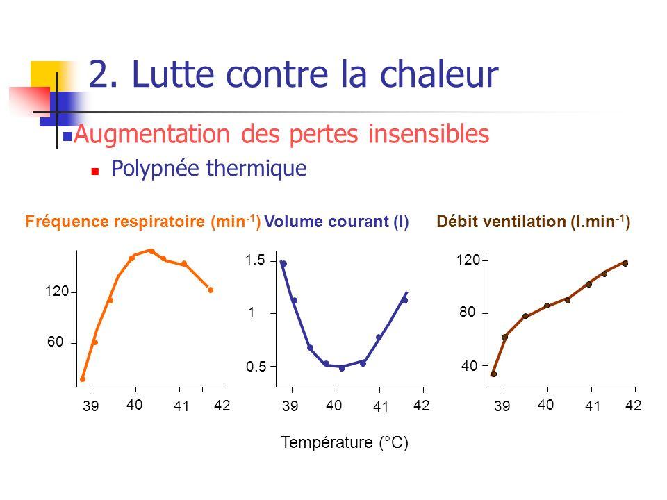 2. Lutte contre la chaleur 39 40 41 42 Température (°C) 60 120 Fréquence respiratoire (min -1 ) 39 40 41 42 40 80 120 Débit ventilation (l.min -1 ) 39