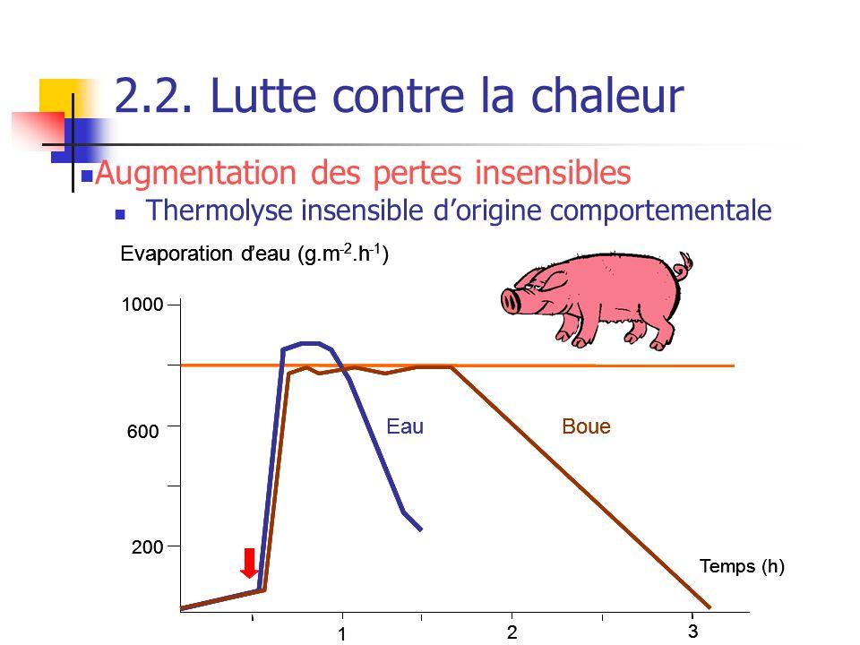 2.2. Lutte contre la chaleur Thermolyse insensible dorigine comportementale Temps (h) Evaporation deau (g.m -2.h -1 ) 200 600 1000 1 2 3 EauBoue Temps