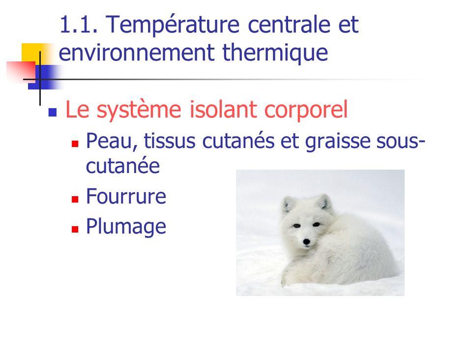 1.1. Température centrale et environnement thermique Le système isolant corporel Peau, tissus cutanés et graisse sous- cutanée Fourrure Plumage