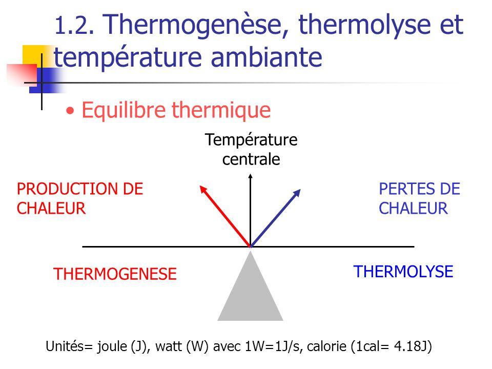 1.2. Thermogenèse, thermolyse et température ambiante PRODUCTION DE CHALEUR PERTES DE CHALEUR Température centrale THERMOGENESE THERMOLYSE Equilibre t