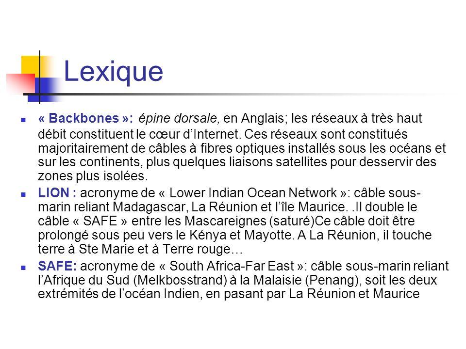 Lexique « Backbones »: épine dorsale, en Anglais; les réseaux à très haut débit constituent le cœur dInternet. Ces réseaux sont constitués majoritaire