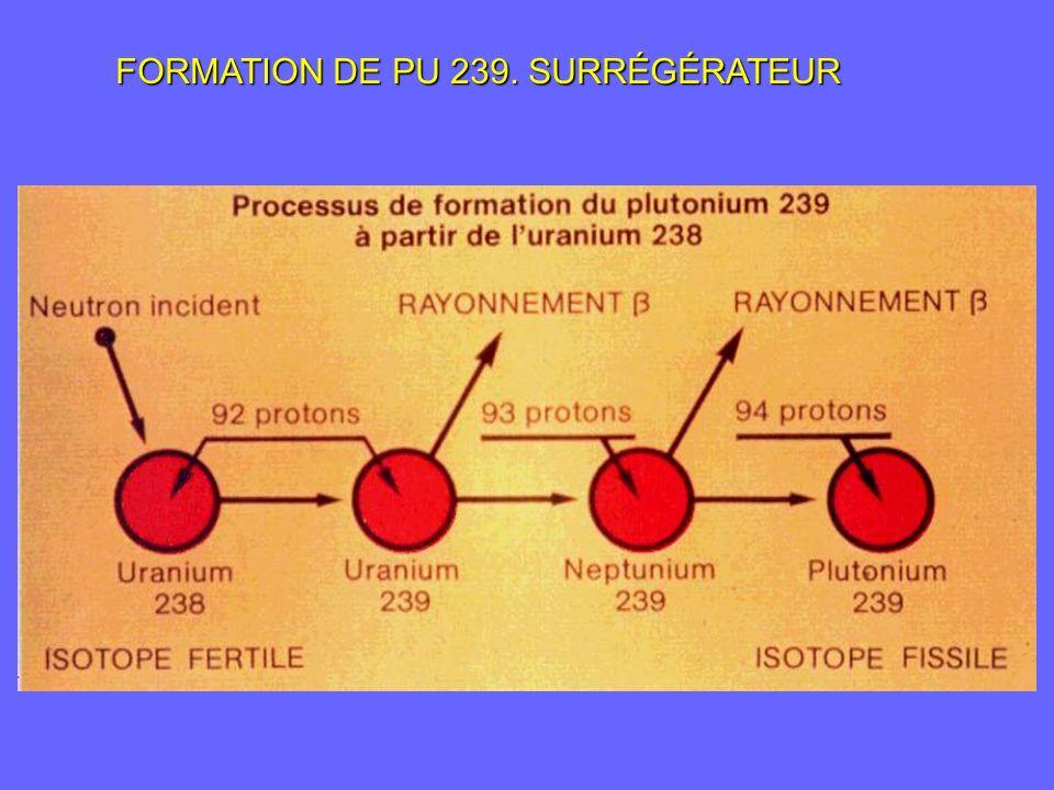 FORMATION DE PU 239. SURRÉGÉRATEUR