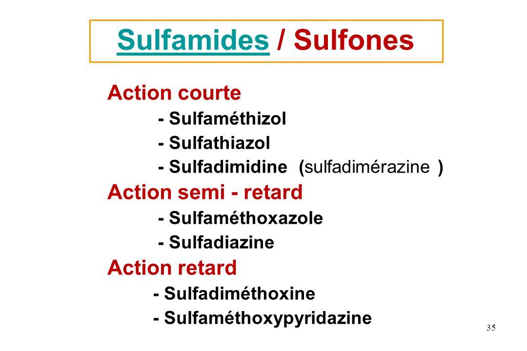 SulfamidesSulfamides / Sulfones Action courte - Sulfaméthizol - Sulfathiazol - Sulfadimidine (sulfadimérazine ) Action semi - retard - Sulfaméthoxazol